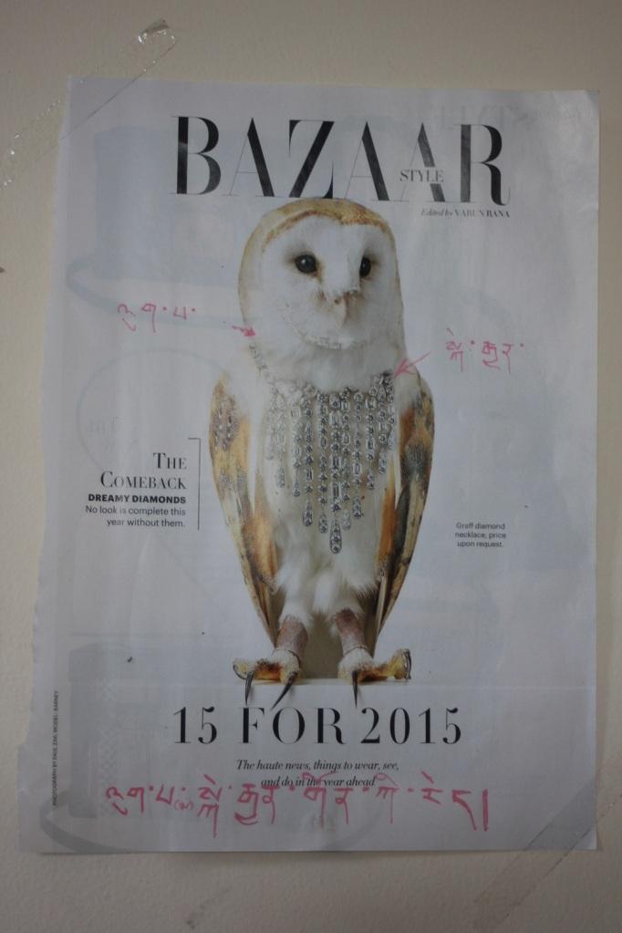 tybetanski_biala_sowa_brylanty_harpers_bazaar