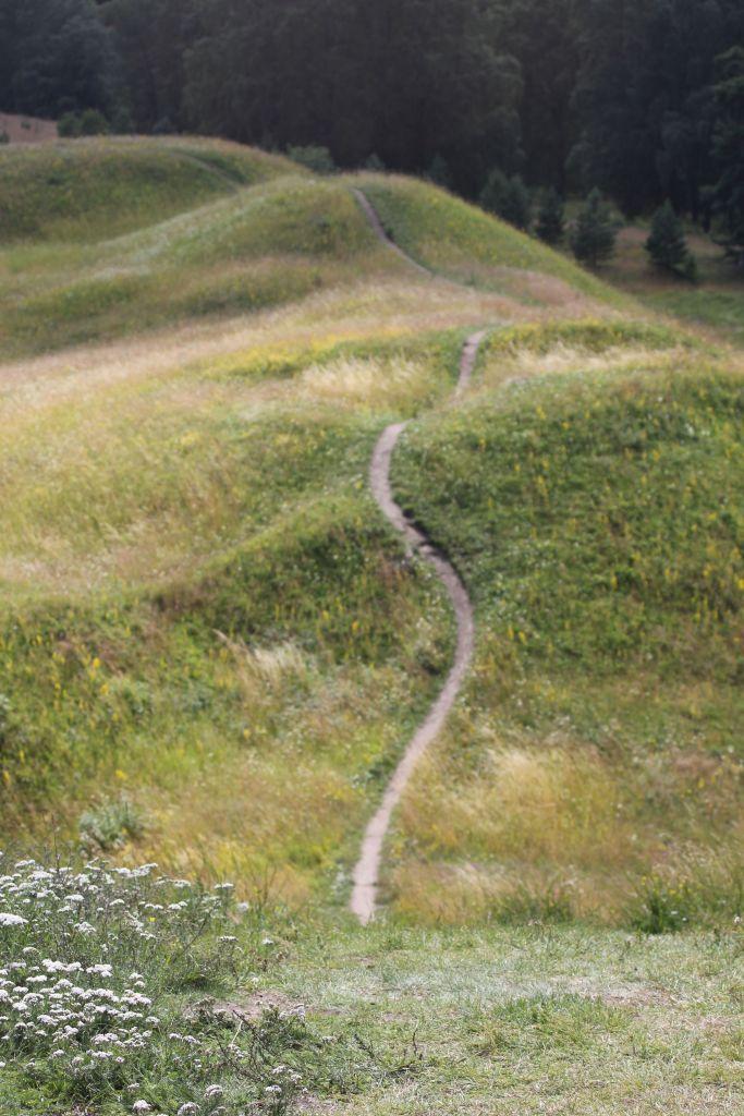 """Korzystając z samochodu pojechaliśmy do Gamla Uppsali. Po co ? W Gamla Uppsali jest """"skandynawskie Stonehedge"""". Kiedyś był tu posąg Thora, dziś jest kościół. Poza tym są kopce czyli groby królów. Ogólnie jest bardzo ładnie."""