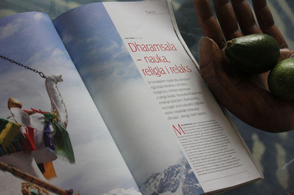 Siedlisko_nr.5/2015_Dharamsala_Indie_Słoń_himalaje