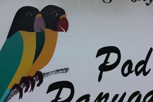 I same papugi o pustych oczach.