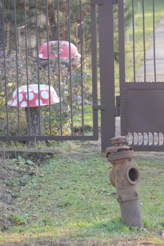 grzyby_muchomory_handmade_hydrant_rękodzieło_PRL_miska_ogród