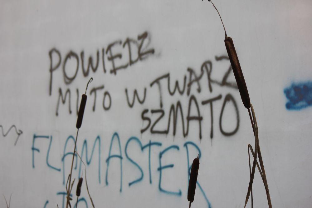powiedz_mi_to_w_twarz_szmato_napis_na_murze_flamaster