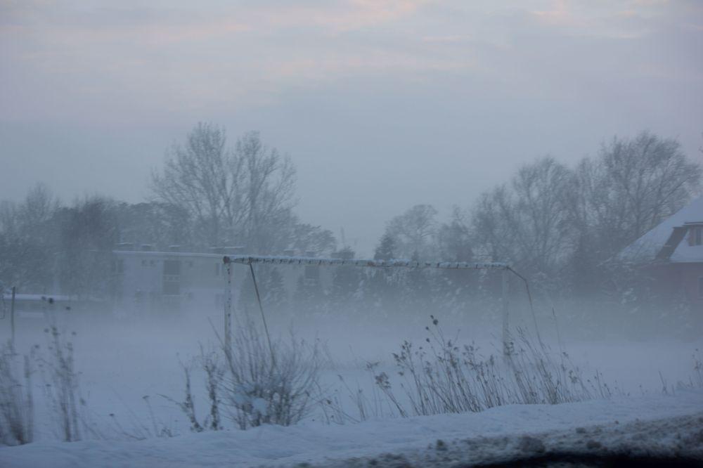bramka_pole_mgła_zima_niebo_zimno_badyle