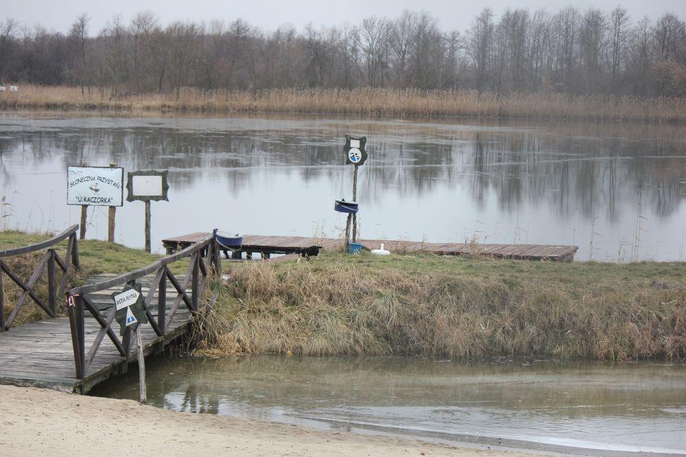 wilga_zalew_jezioro_rzeka_kot_most_drewniany_pole_znaki_ostrzeżenia_pomost_drzewa
