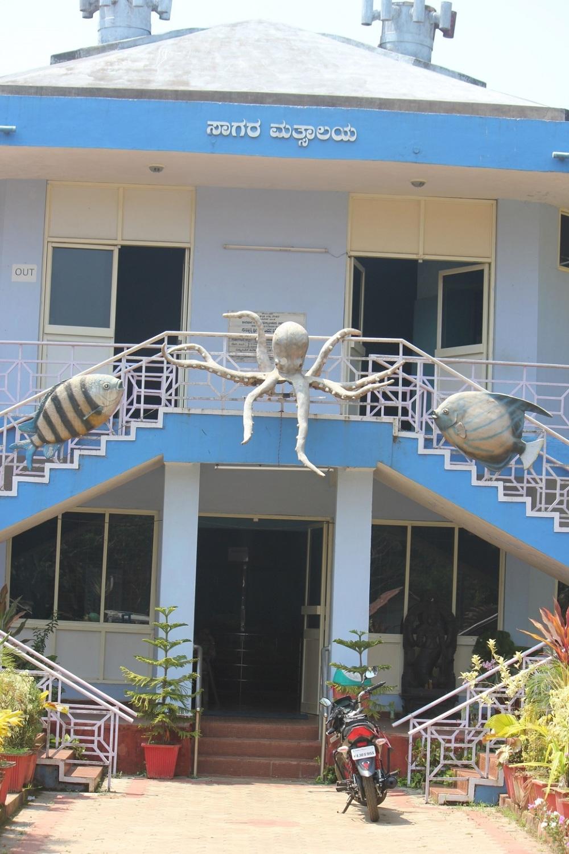 karnataka_karwar_muzeum_oceanarium_aquarium_ośmiornica_rybki_dekoracja_budynku_figurki_płaskorzeźby