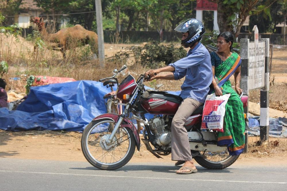 wielbłąd_motor_hindusi_hinduska_sari_indie_karnataka_karwar