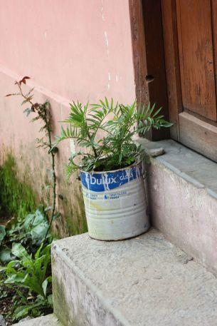 Jak zrobić w domu doniczkę na kwiaty