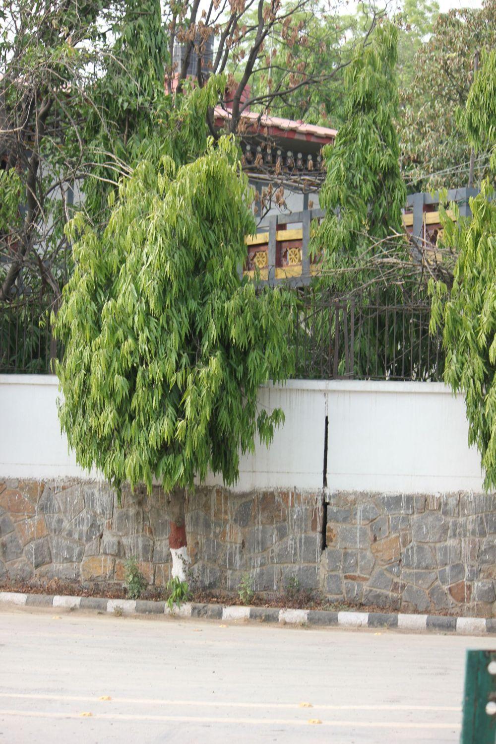 ambasada_buthanu_delhi