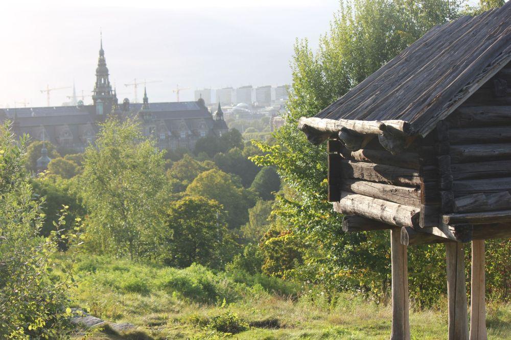 dom_na_kurzej_stopie_panorama_sztokholmu_skansen