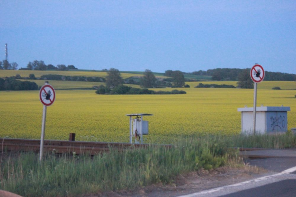 przejazd kolejowy pole rzepak żółte znak zakaz niemcy