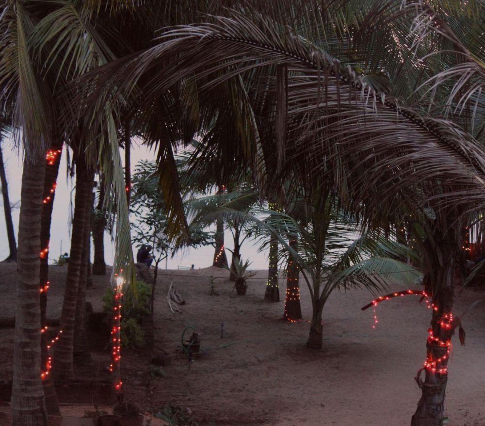 plaża_agonda_vaporwave_decor_palms_pink_różowe_światła_palmy