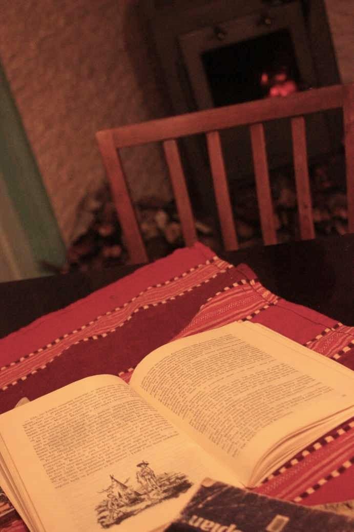 błotowij_błotosmętek_książka_przy_kominku_narnia