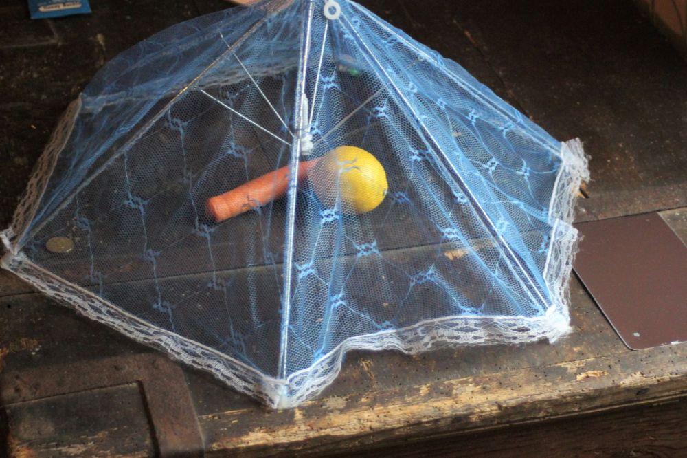 parasol_na_jedzenie_muchy