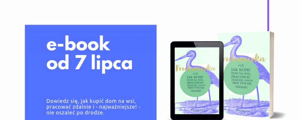 cropped-e-book-od-7-lipca_przed.png